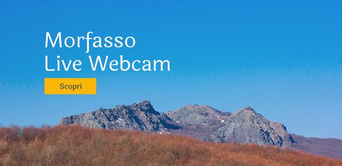 morfasso webcam-hover