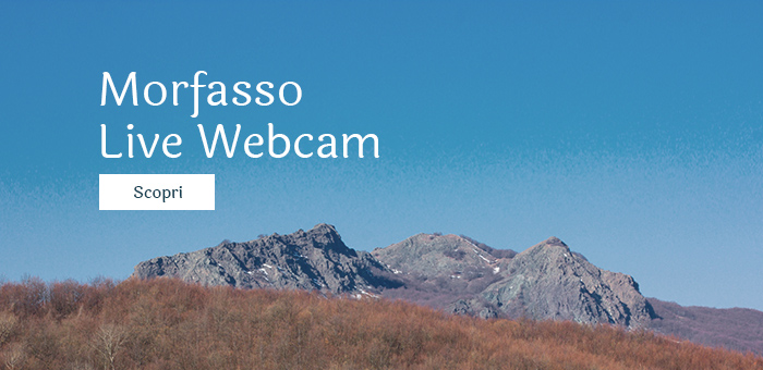 morfasso webcam